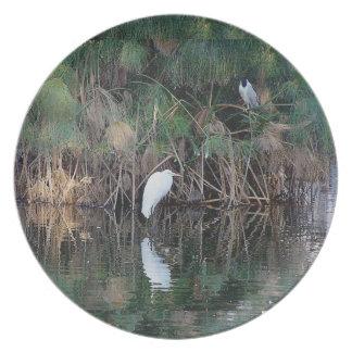 Wetlands Birds Wildlife Animals Refuge Plate