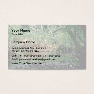 Wetlands, Delaware Business Card