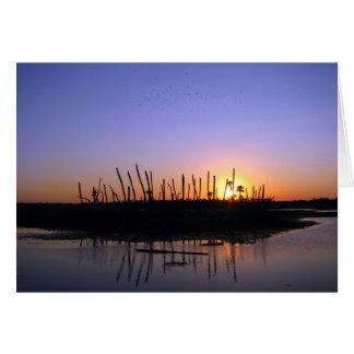 Wetlands Evening Greeting Card