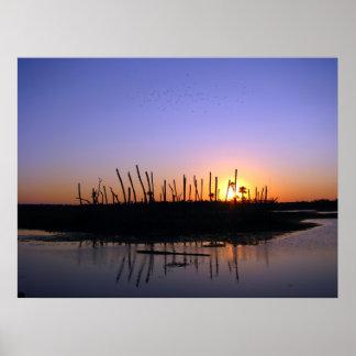 Wetlands Evening Posters