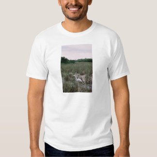 Wetlands, Everglades T-Shirt