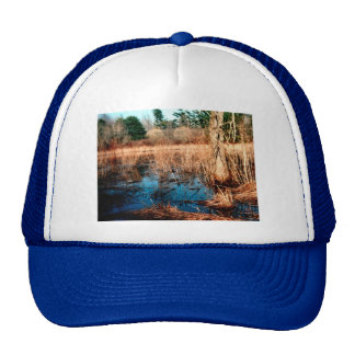 Wetlands Trucker Hat