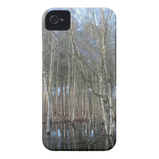 Wetlands in Delamere Forest iPhone 4 Case