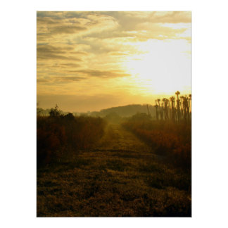 Wetlands Morning Posters