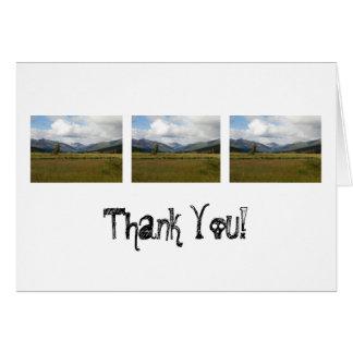 Wetlands Paradise; Thank You Card