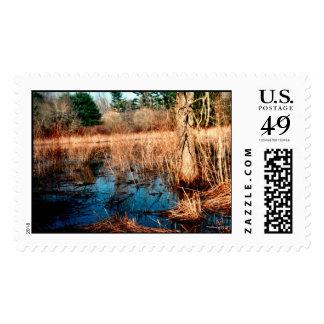 Wetlands Stamps