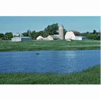 Wetlands, upper midwest photo cut out