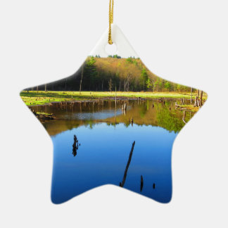 Wetlands Waterway Double-Sided Star Ceramic Christmas Ornament