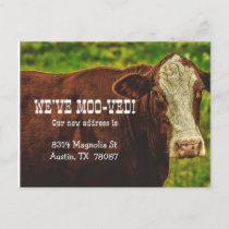 We've Moo-ved Moving Announcement Postcard