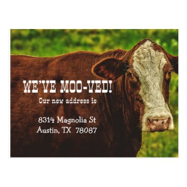 Beach Themed We've Moo-ved Moving Announcement Postcard