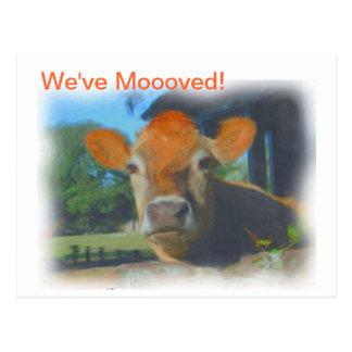 We've Moooved New Address Postcard