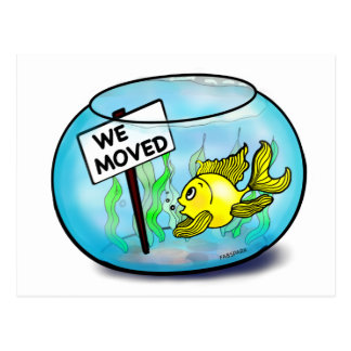 We've Moved funny cute goldfish fish tank cartoon Postcard