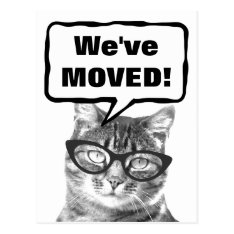 We've Moved Moving Postcards With Funny Cat at Zazzle