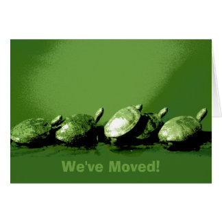 We've Moved Turtles Cards