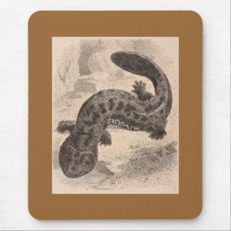 WH Freeman - The Great Japanese Salamander Mouse Pad