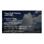 Whakarewarewa, Pohutu geyser, Rotorua, New Zealand Double-Sided Standard Business Cards (Pack Of 100)