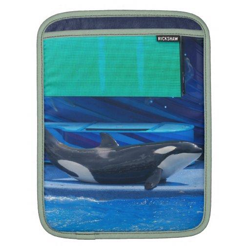 whale-57 fundas para iPads