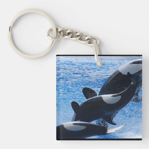 whale-77 square acrylic keychains