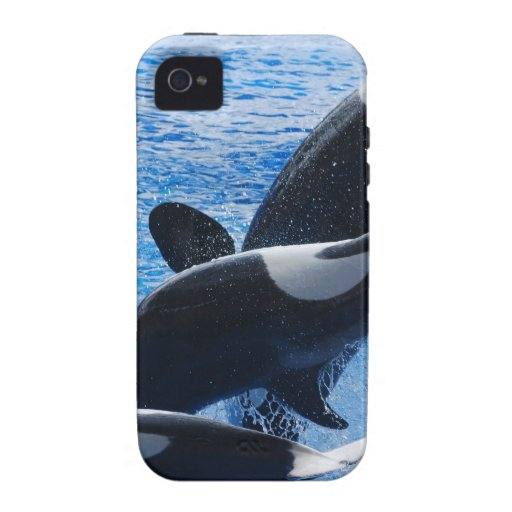 whale-77 vibe iPhone 4 cases