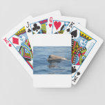 Whale and Reflection Bicycle Poker Cards