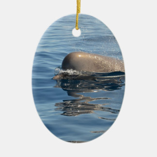 Whale and Reflection Ceramic Ornament
