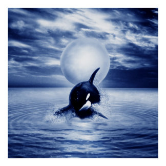 Whale and the moon in 2012 poster