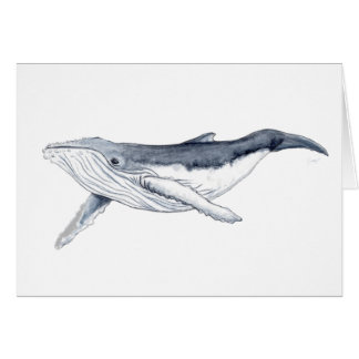 whale baby fond transparent card
