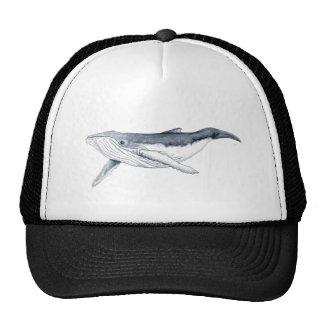whale baby fond transparent trucker hat