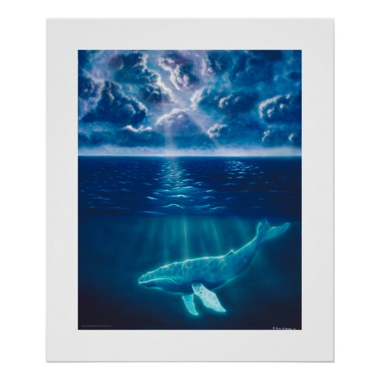Whale Below Poster