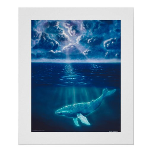 Whale Below Posters