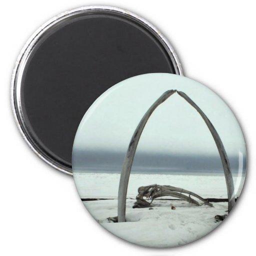 Whale Bone Rib Arc and Skin Boat Frames at Barrow, 2 Inch Round Magnet