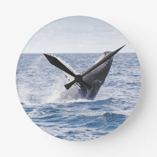 Whale Breaching the Water Round Clock