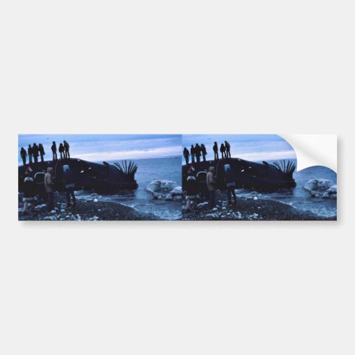 Whale Bumper Stickers