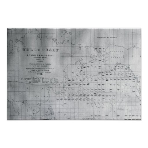 Whale Chart of the North Pacific, 1851 Poster