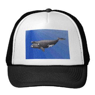 whale-clip-art-2 gorras de camionero