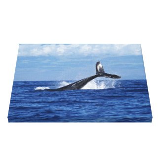 Whale Diving in Ocean, Fluke, Tail out of Water Canvas Print
