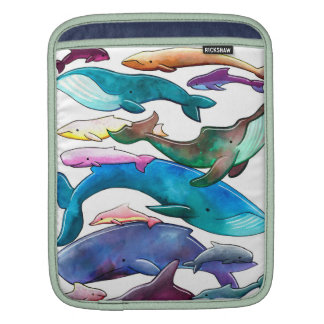 Whale, Dolphin & Porpoise iPad Rickshaw Sleeve iPad Sleeve