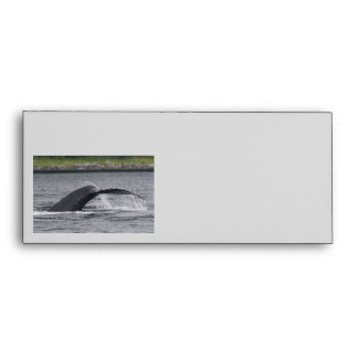 whale envelope