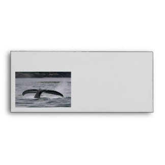 whale envelopes