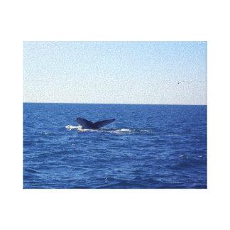 Whale-fin in the sea canvas print