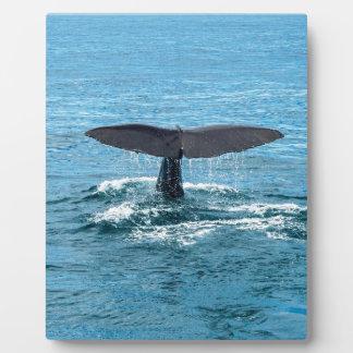 Whale fin plaque