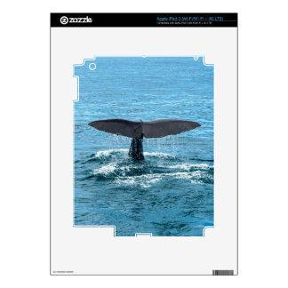 Whale fin iPad 3 skin