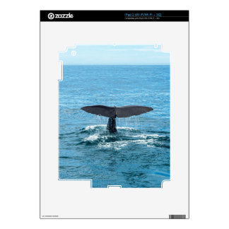 Whale fin iPad 2 decal