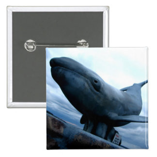 Whale Fly Pinback Button