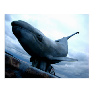 Whale Fly Postcard