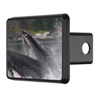 whale hitch cover