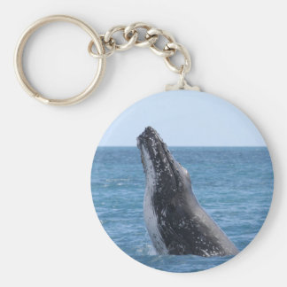 Whale Huggers Square Button Basic Round Button Keychain