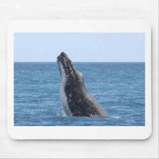 Whale Huggers Square Button Mouse Pad