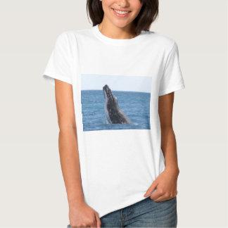 Whale Huggers Square Button T Shirt