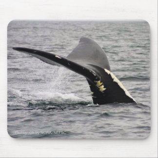 Whale in Ocean Mousepad
